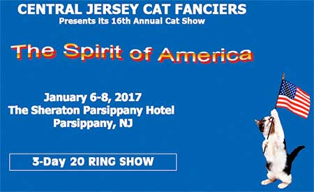 Cat show in Parcipanny, NJ